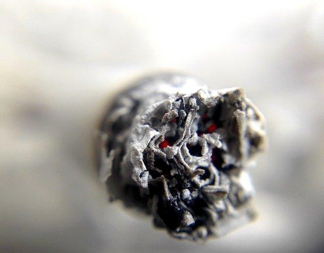 Tobakens påverkan